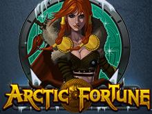 Игровой автомат Арктическое Богатство